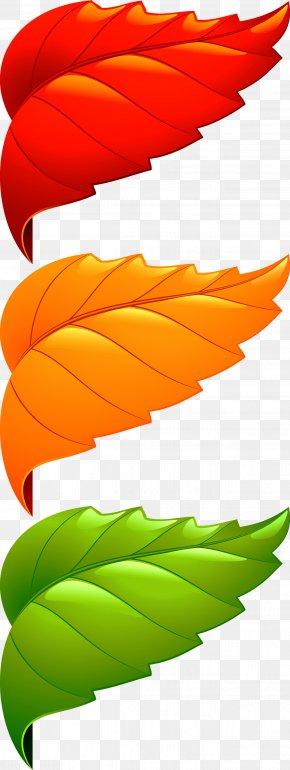 Corner Decorative Leaves - Maple Leaf Adobe Illustrator PNG