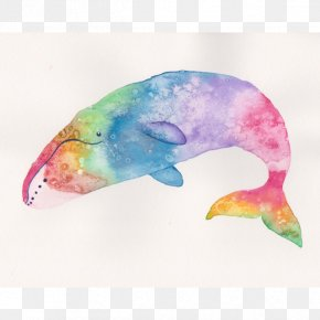 Watercolor Whale - Marine Mammal Watercolor Painting Printmaking Giclée PNG