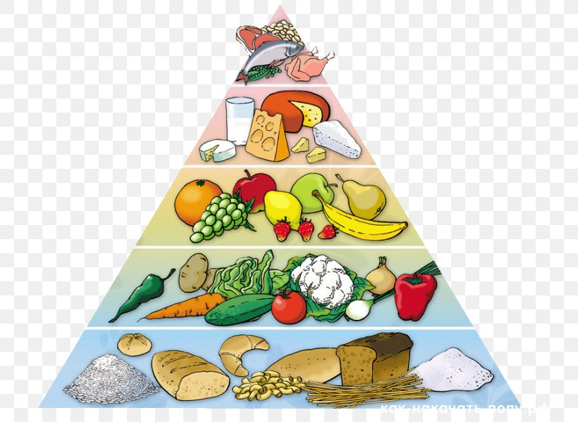 Food Pyramid Healthy Diet Eating Nutrition Png 750x600px Food Pyramid Christmas Decoration Christmas Ornament Christmas Tree