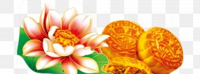 Lotus - China Mid-Autumn Festival Happiness Traditional Chinese Holidays Loving-kindness PNG