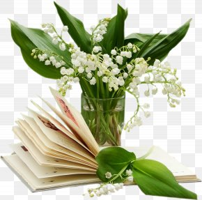 Lily Of The Valley - Lily Of The Valley 1 May French Loto Luck PNG