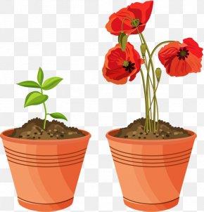Plants - Clip Art Flowerpot Houseplant Flowering Pot Plants Garden PNG