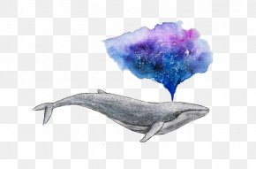 Water Whale - Watercolor Painting Drawing Whale Art PNG
