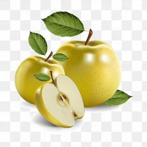 Vector Apples And Leaves - Fruit Euclidean Vector Clip Art PNG