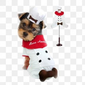 Pet Doctor Dog - Dachshund Puppy Costume Chef Pet PNG