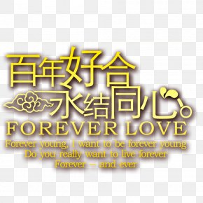 Creative Wedding Flowers - Marriage Wedding PNG
