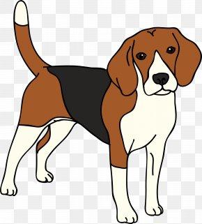 Unhappy Dog Map - Beagle English Foxhound American Foxhound Harrier Finnish Hound PNG