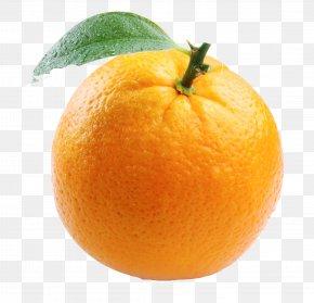 Orange Free Image - Orange Juice Mimosa Nagpur PNG