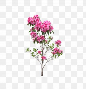 Landscape Flowers And Trees - Flower PNG
