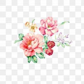 Cartoon Rose - Rosa Chinensis Flower Plant Floral Design Pattern PNG