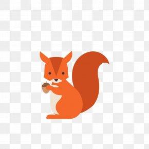 Squirrel - Squirrel Animal Euclidean Vector PNG