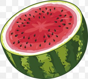 Vector Watermelon Sectional View - Watermelon Juice Fruit Food PNG