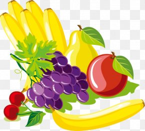 Exquisite Fruits And Vegetables - Fruit Vegetable Food Illustration PNG
