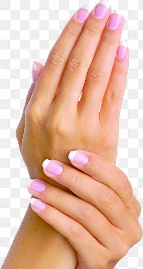 Human Skin Skin Care Human Body Clip Art PNG