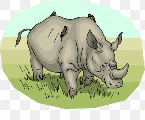 Green Rhino Cliparts - Northern White Rhinoceros Pig Horn Clip Art PNG
