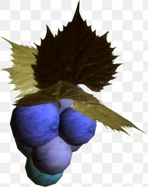 Grapes Images - The Elder Scrolls V: Skyrim Grape Wikia Clip Art PNG