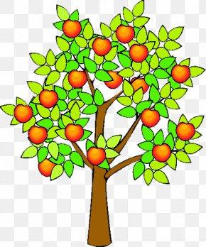 Orange Fruit Tree - Drawing Apple Fruit Tree Clip Art PNG