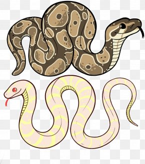 Brown Snake Boa Constrictor - Snake Cartoon PNG