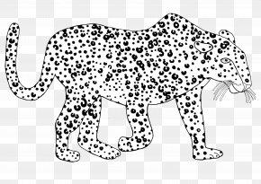 Leopard - The Leopard, Burslem Whiskers Jaguar Snow Leopard PNG