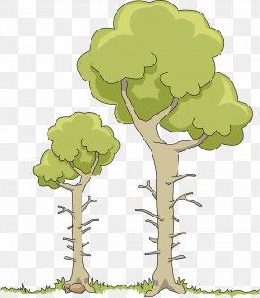 Tree Branch - Tree Clip Art PNG