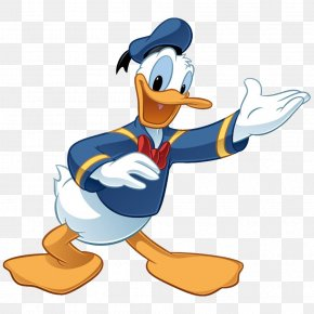 Donald Duck - Donald Duck Mickey Mouse Daisy Duck The Walt Disney Company Huey, Dewey And Louie PNG