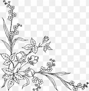 Design - Floral Design Black And White Art PNG