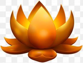 Yellow Glowing Lotus Free Clip Art Image - Lotus Cars Lotus Evora PNG