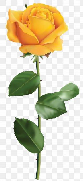 Yellow Rose Transparent Clip Art Image - Yellow Rose Clip Art PNG