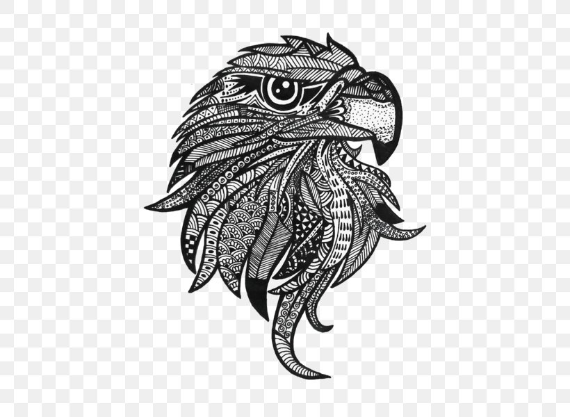 Eagle coloring pages - Bird coloring pages - animals coloring ... | 600x820
