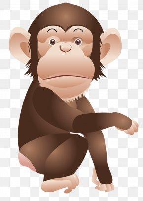 Monkey Clipart Picture - Chimpanzee Monkey Ape Clip Art PNG