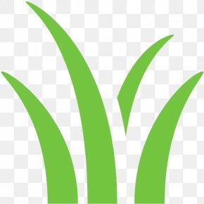 Deciduous - Leaf Grasses Logo Plant Stem PNG