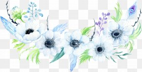 Windflower Anemone Piperi - Clip Art Floral Design Illustration Flower PNG