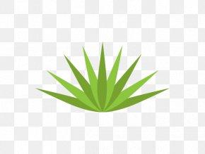 Wall Decal - Leaf Grasses Plant Stem Hemp PNG