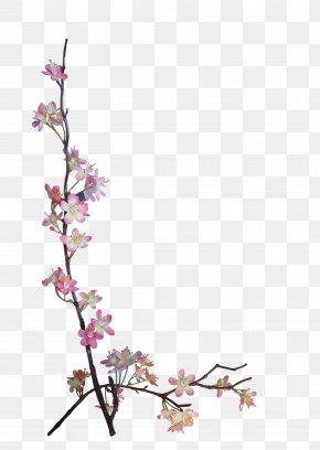 BLOSSOM - Flower Paper Embellishment Scrapbooking Floral Design PNG