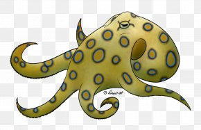 Greater Blueringed Octopus - Greater Blue-ringed Octopus Drawing Giant Pacific Octopus PNG