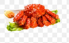 King Crab Buckle-free Material - Red King Crab Seafood Shrimp PNG