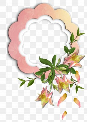 Magnolia Picture Material - Floral Design Picture Frames Flower Photography PNG