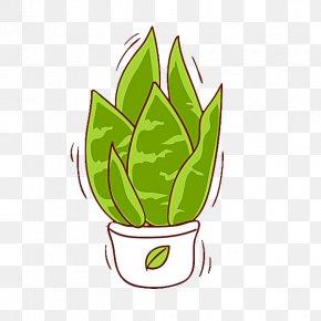 Pot Of Aloe Vera - Aloe Vera Plant Illustration PNG