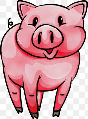 Domestic Pig Nose - Cartoon Pink Clip Art Snout Suidae PNG