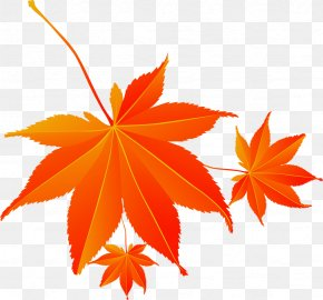 Red Autumn Maple Leaf Electricity Supplier - Maple Leaf Download Cartoon PNG