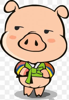 Funny Pig - Domestic Pig Cartoon Illustration PNG