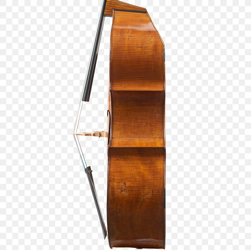 Cello Double Bass Viola Violin Bass Guitar Png 500x816px