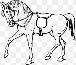 Bowling Pin Outline - Tennessee Walking Horse Stallion Drawing Clip Art PNG