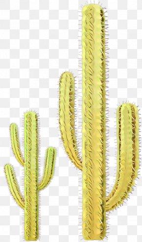 Terrestrial Plant Flower - Cactus Cartoon PNG