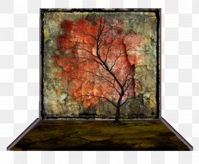 Tree - Tree Still Life Picture Frames Wood /m/083vt PNG