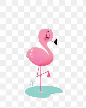 Flamingos - Bird Flamingos Animation Icon PNG