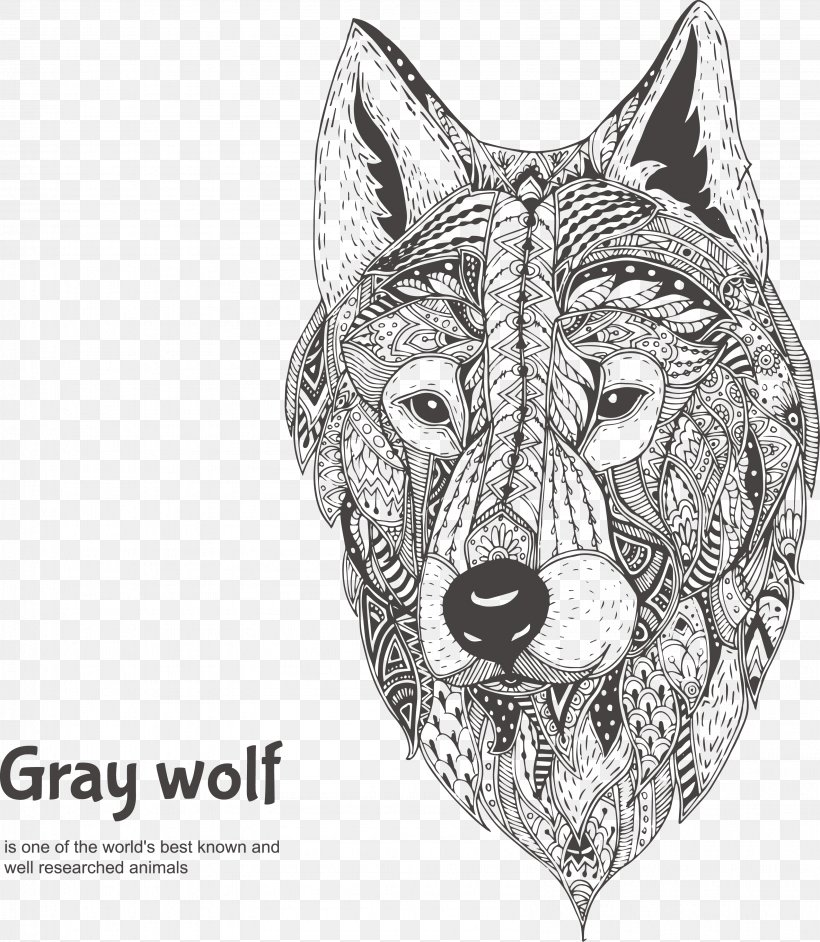 Gray Wolf Drawing Illustration Png 3187x3665px Gray Wolf