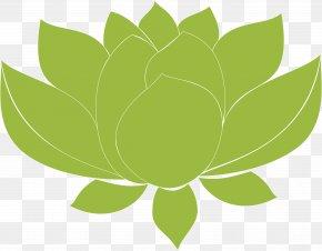 Leaf - Leaf Green Desktop Wallpaper Plant Stem Computer PNG