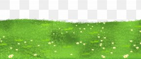 Grass Ground With Daisies Clipart - Lawn Grasses Clip Art PNG