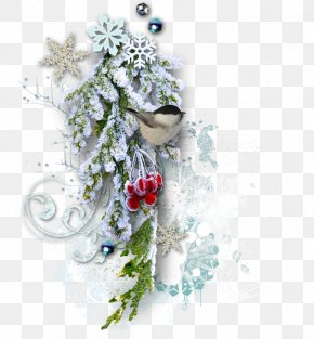Christmas Snow - Christmas Picture Frame New Year PNG
